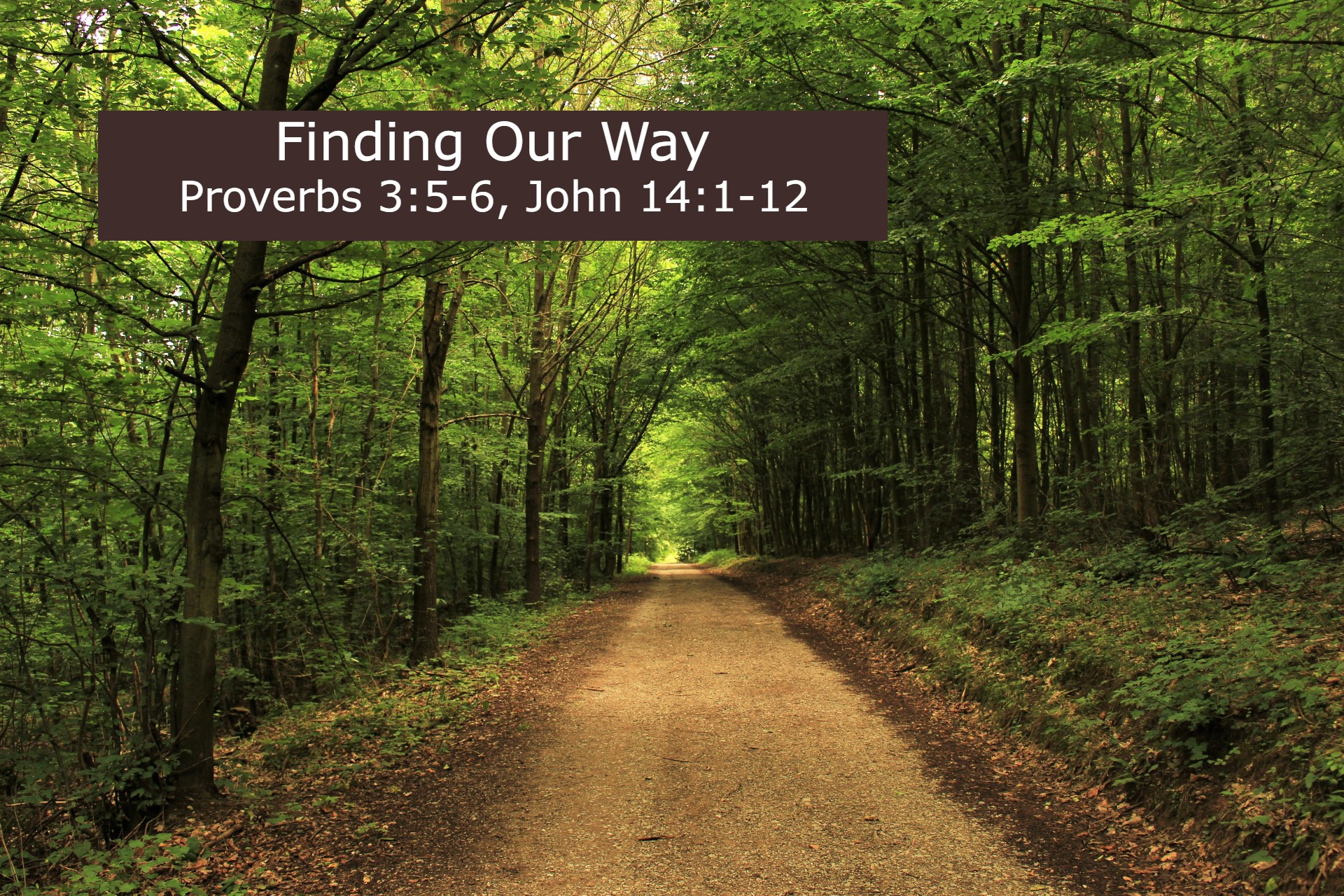 """photo of pathway with sermon title """"Finding Our Way"""""""